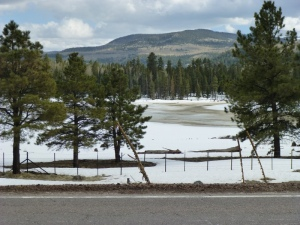 Frozen lake in Arizona between Springerville and Pinetop